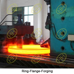 Ring-Flange-Forging