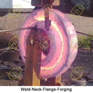 Weld-Neck-Flange-Forging