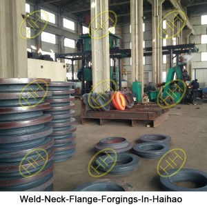 Weld-Neck-Flange-Forgings-In-Haihao